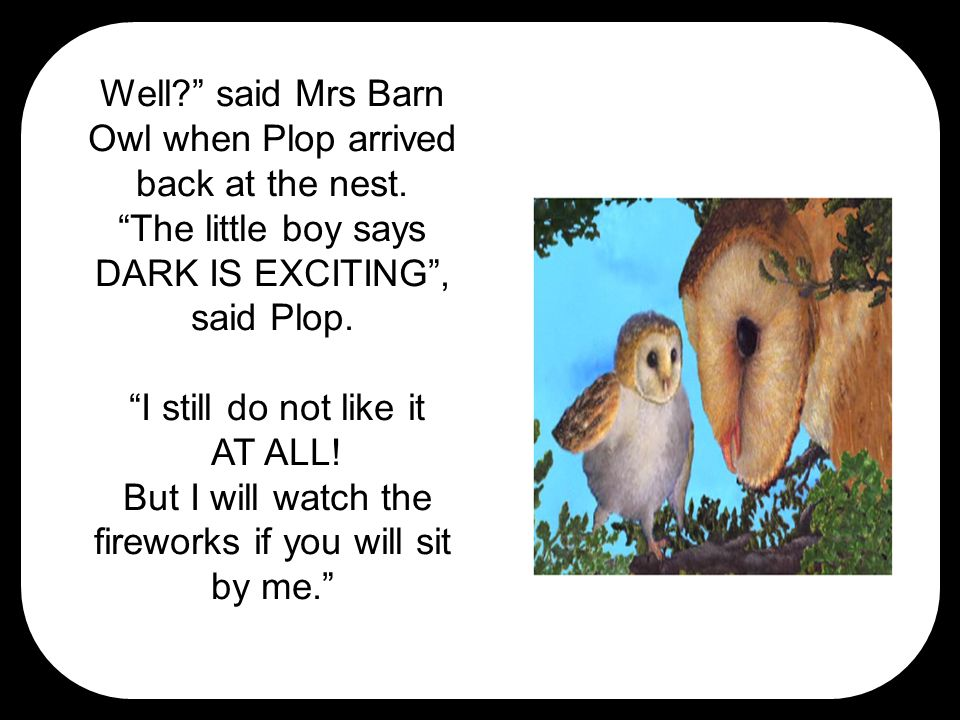 Well? said Mrs Barn Owl when Plop arrived back at the nest.