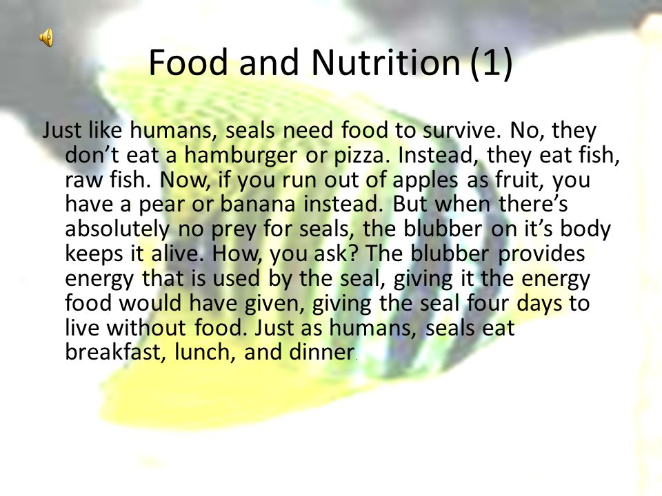 Food and Nutrition (1) Just like humans, seals need food to survive.