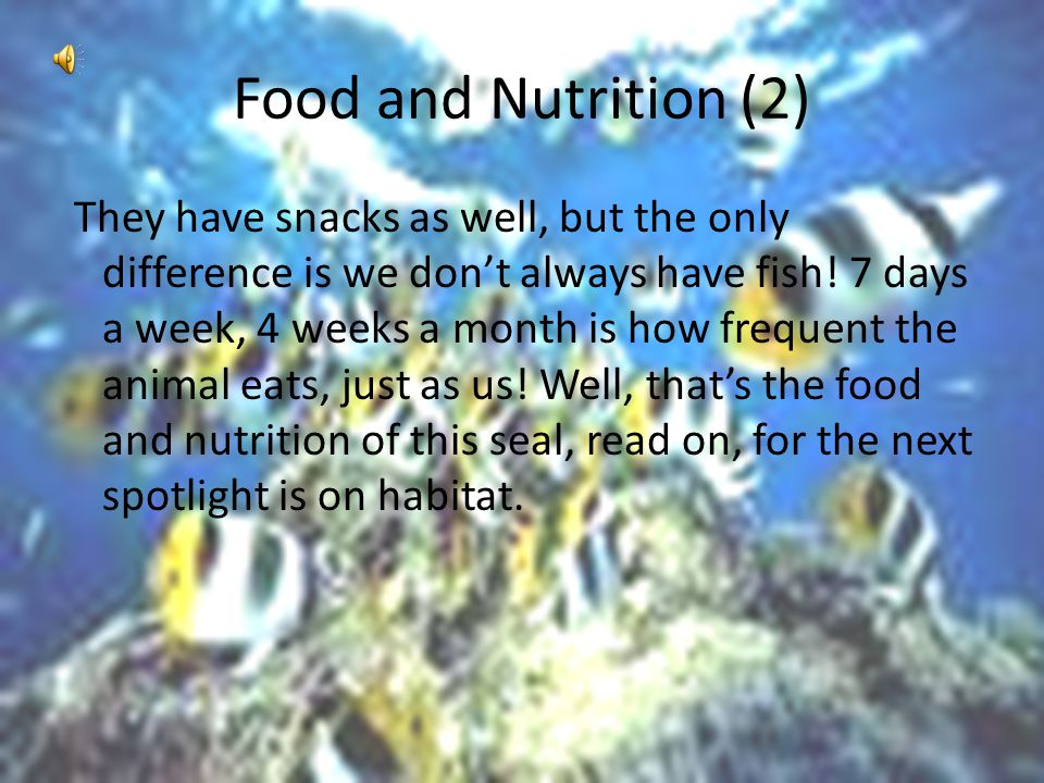 Food and Nutrition (1) Just like humans, seals need food to survive. No, they don't eat a hamburger or pizza. Instead, they eat fish, raw fish. Now, i