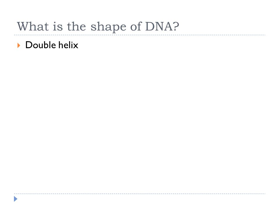 What is the shape of DNA?  Double helix