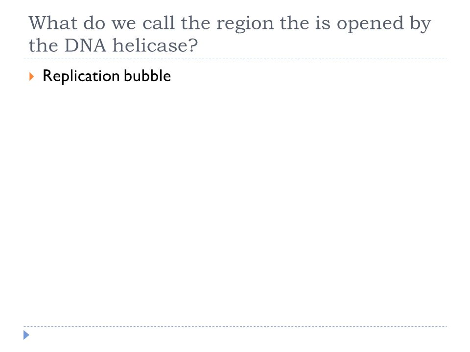 What do we call the region the is opened by the DNA helicase?  Replication bubble