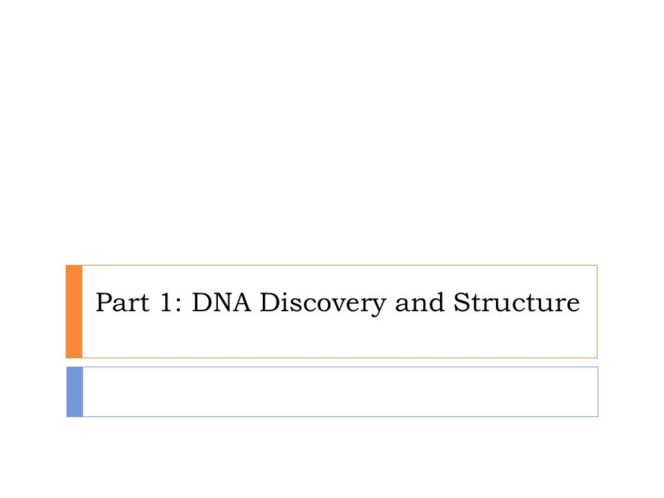 Part 1: DNA Discovery and Structure