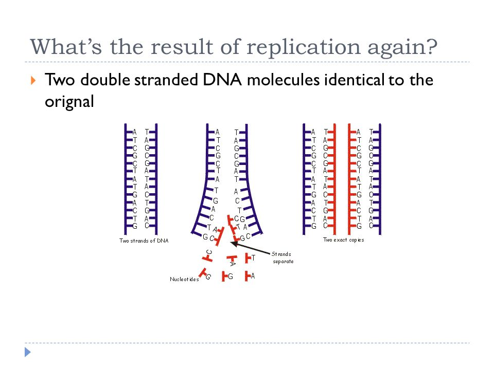 What's the result of replication again.