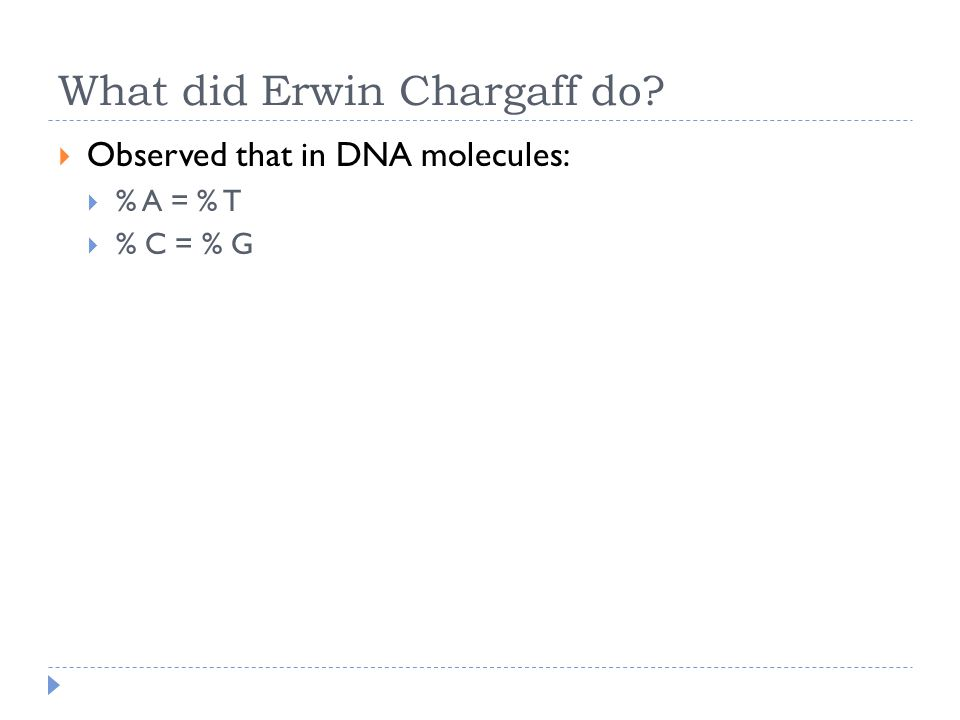 What did Erwin Chargaff do  Observed that in DNA molecules:  % A = % T  % C = % G