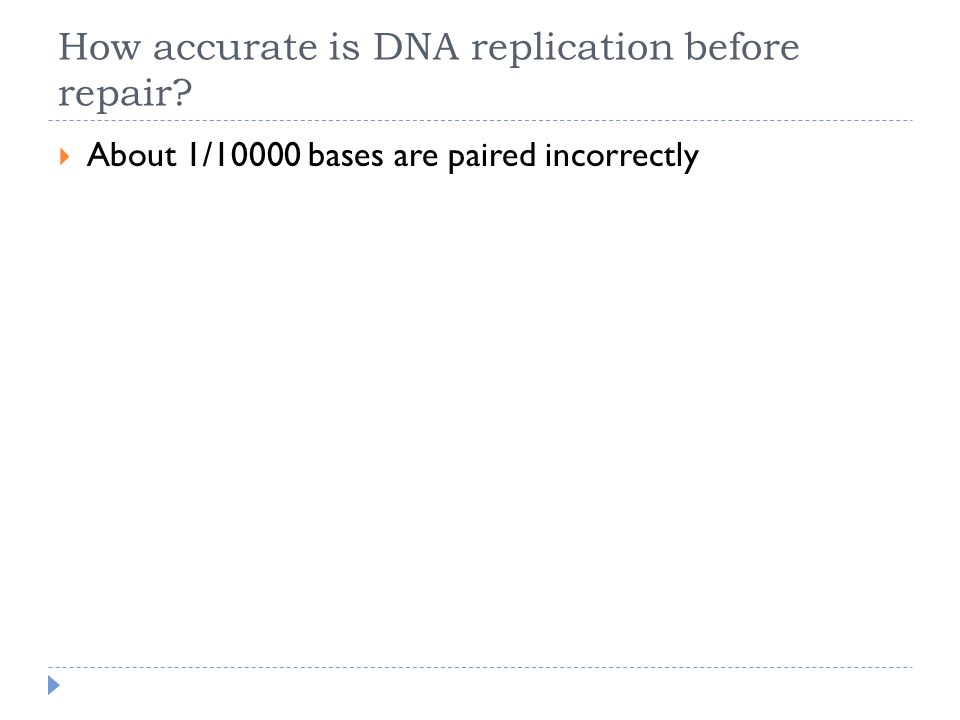 How accurate is DNA replication before repair?  About 1/10000 bases are paired incorrectly