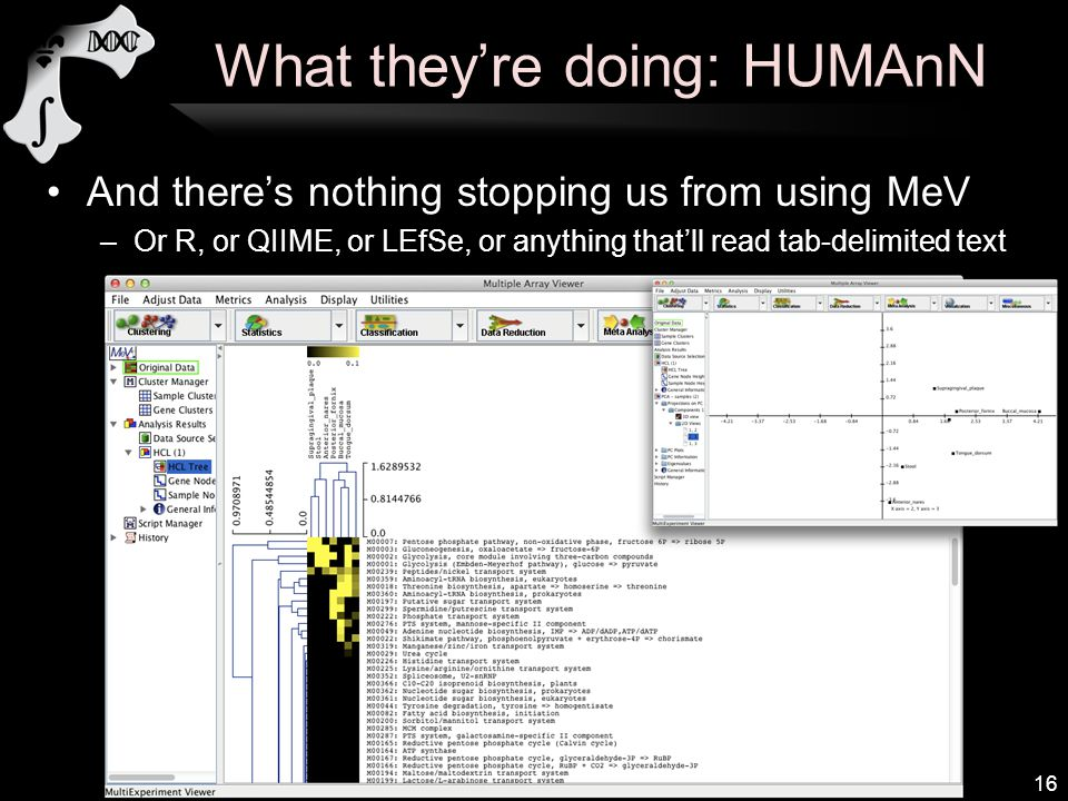 What they're doing: HUMAnN And there's nothing stopping us from using MeV –Or R, or QIIME, or LEfSe, or anything that'll read tab-delimited text 16