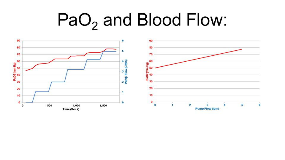 PaO 2 and Blood Flow: