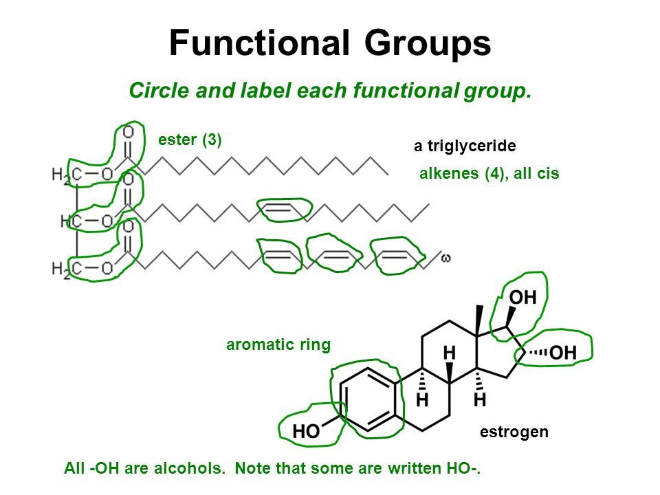 Functional Groups Circle and label each functional group.