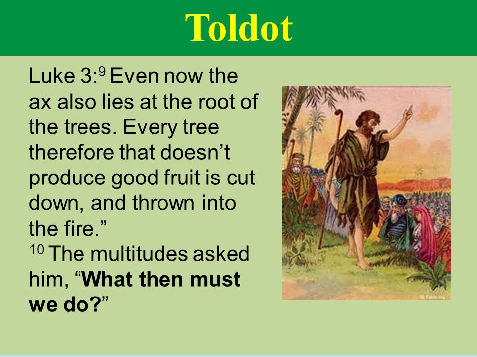 Toldot Luke 3: 9 Even now the ax also lies at the root of the trees.