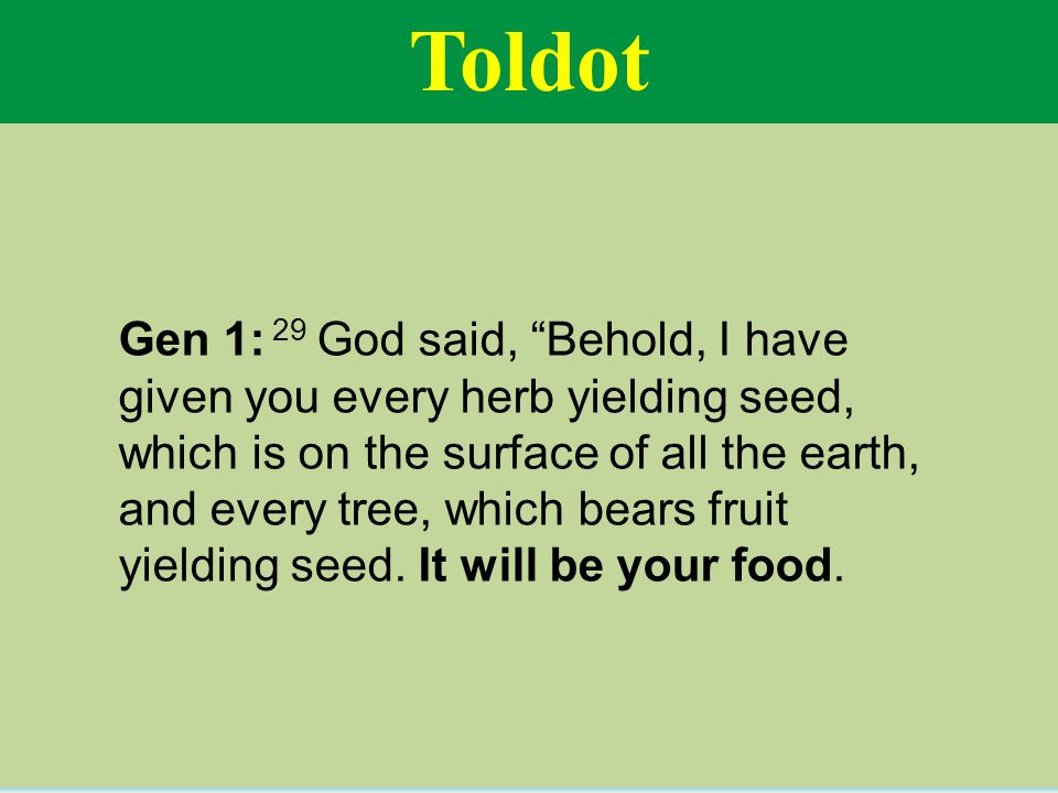 Toldot Gen 1: 29 God said, Behold, I have given you every herb yielding seed, which is on the surface of all the earth, and every tree, which bears fruit yielding seed.