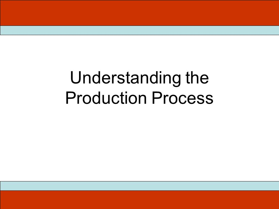 Understanding the Production Process