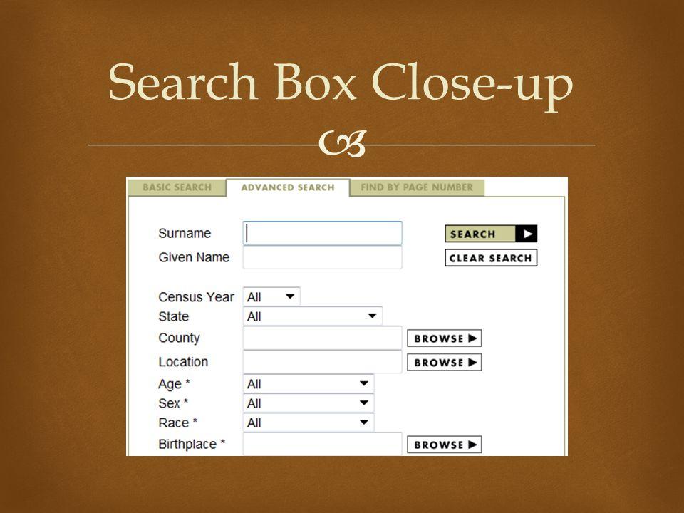  Search Box Close-up
