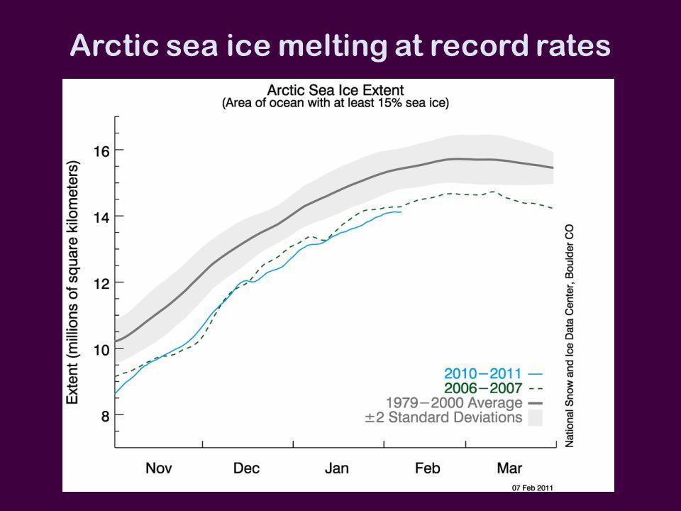Arctic sea ice melting at record rates