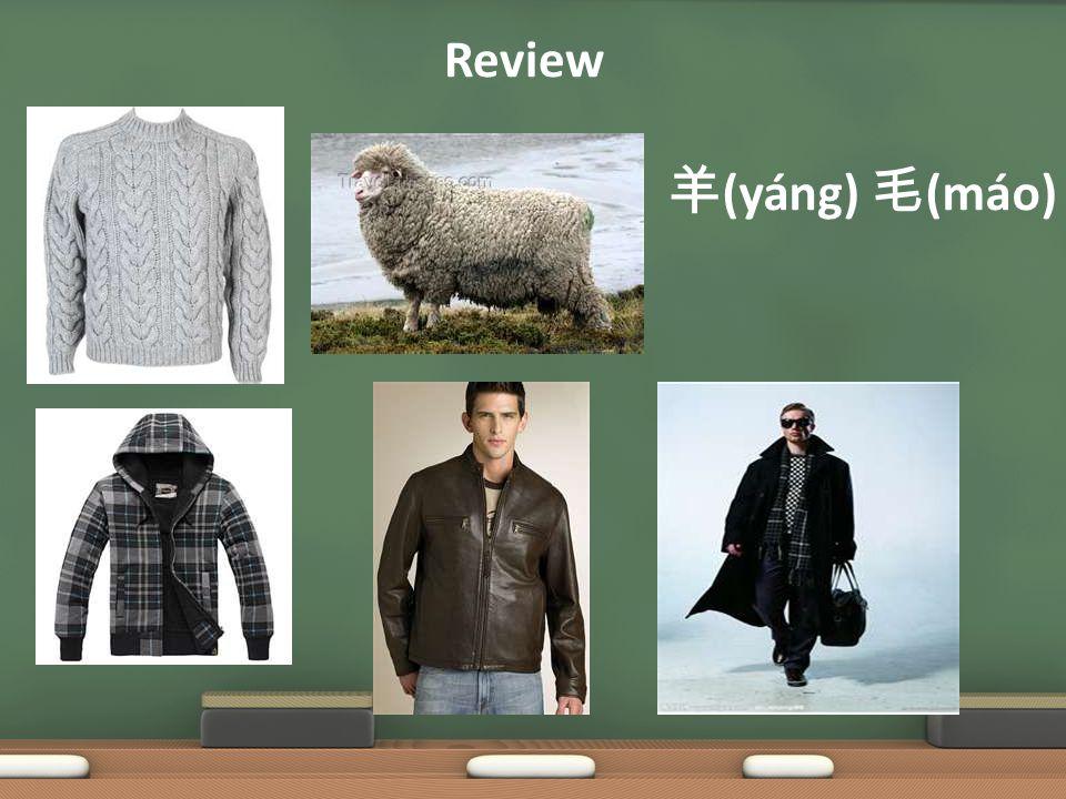 Review 羊 (yáng) 毛 (máo)