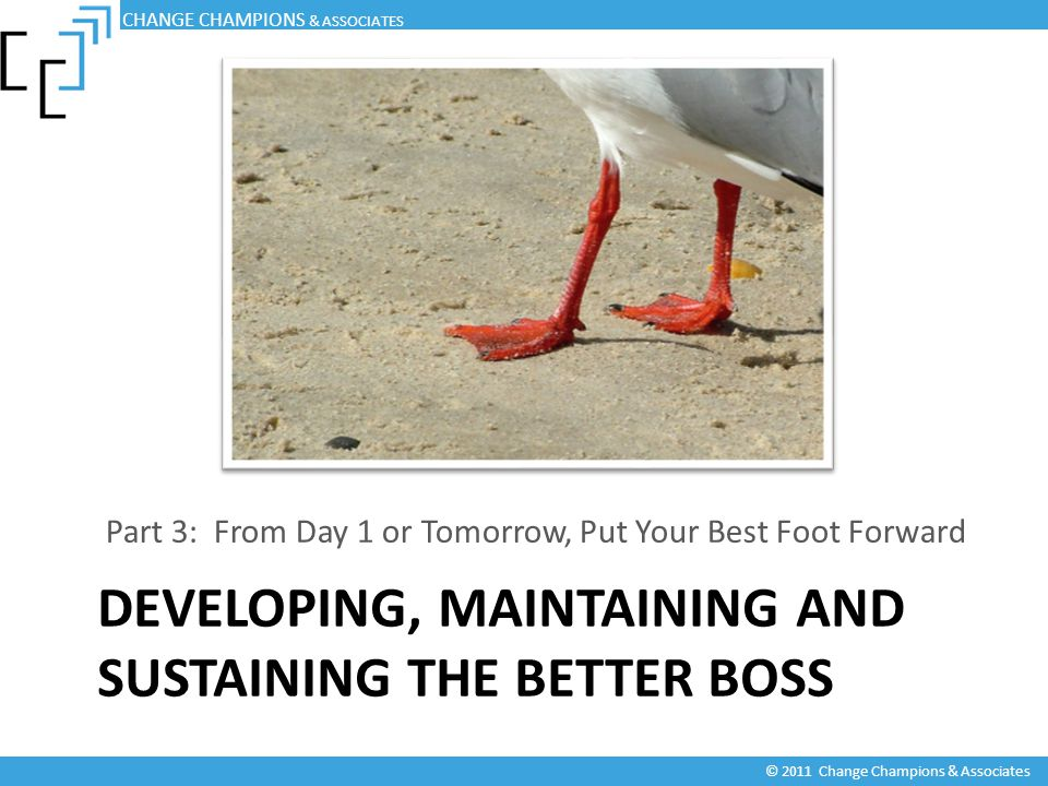 DEVELOPING, MAINTAINING AND SUSTAINING THE BETTER BOSS Part 3: From Day 1 or Tomorrow, Put Your Best Foot Forward CHANGE CHAMPIONS & ASSOCIATES © 2011 Change Champions & Associates