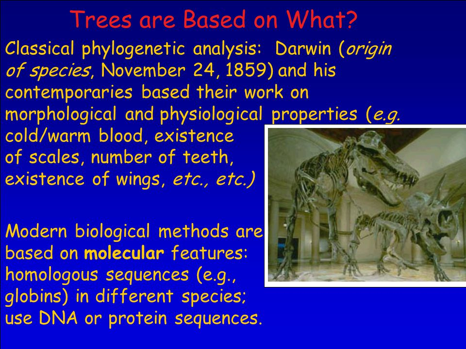 Classical phylogenetic analysis: Darwin (origin of species, November 24, 1859) and his contemporaries based their work on morphological and physiological properties (e.g.