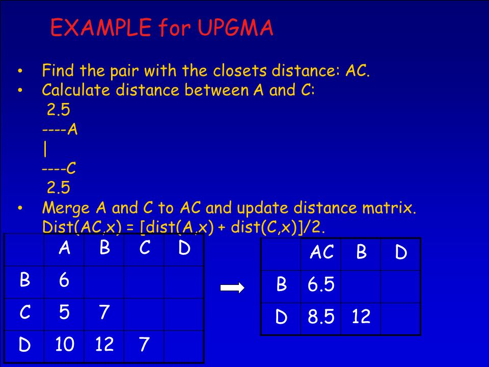 EXAMPLE for UPGMA Find the pair with the closets distance: AC.