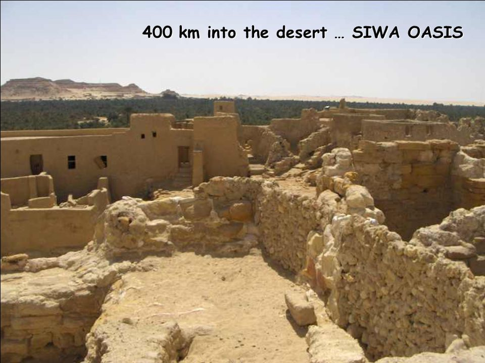 400 km into the desert … SIWA OASIS