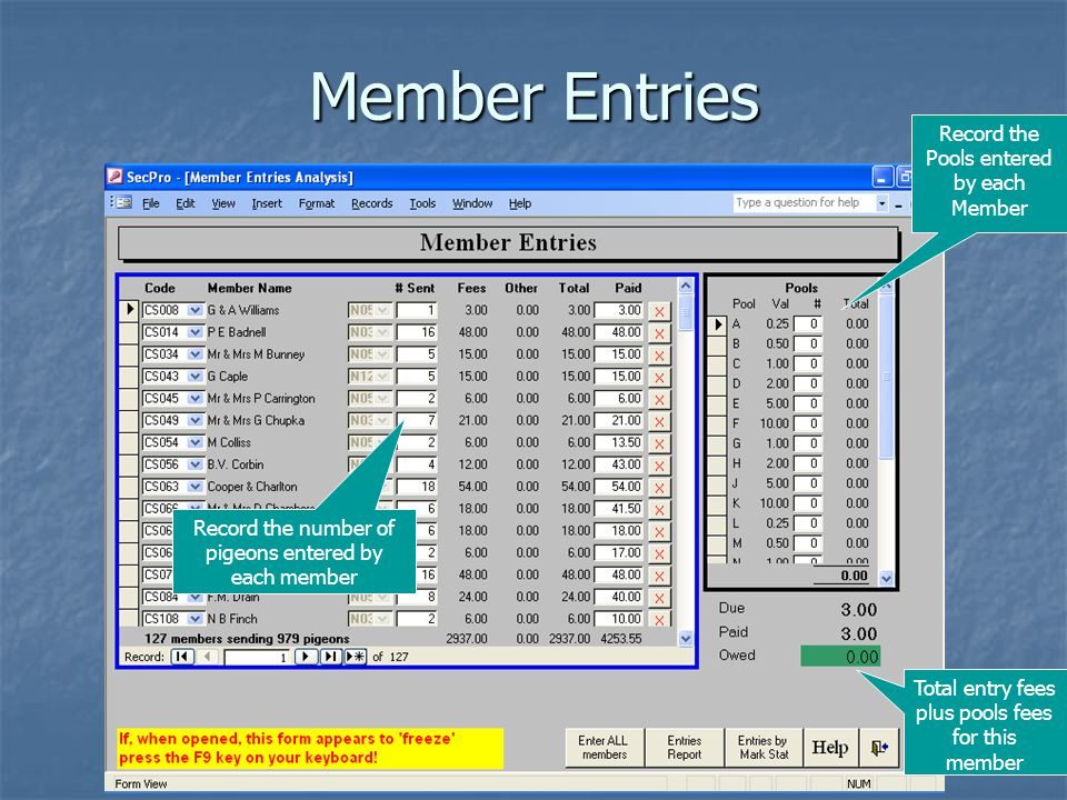 Member Entries Record the number of pigeons entered by each member Record the Pools entered by each Member Total entry fees plus pools fees for this member