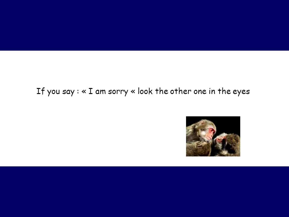 If you say : « I am sorry « look the other one in the eyes