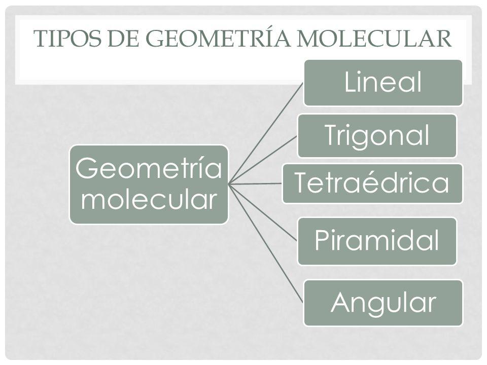 MOLÉCULA LINEAL Átomos enlazantes : 2 Pares de electrones apareados: 0 Tipo de molécula : AX 2 Angulo: 180 ° Ejemplo: BeCl 2
