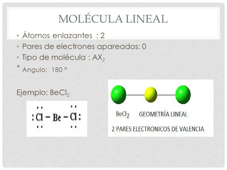MOLECULAR TRIGONAL Átomos enlazantes : 3 Pares de electrones apareados: 0 Tipo de molécula : AX 3 Angulo: 120° Ejemplo: BF 3