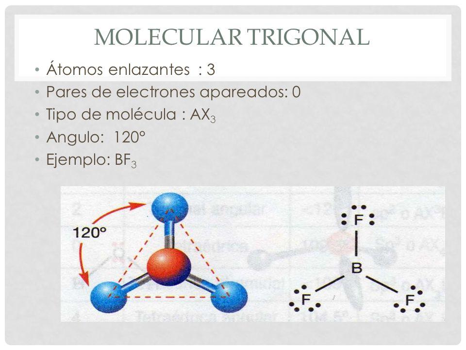 MOLÉCULA TETRAÉDRICA Átomos enlazantes : 4 Pares de electrones apareados: 0 Tipo de molécula : AX 4 Angulo: 109,5° Ejemplo: CH 4
