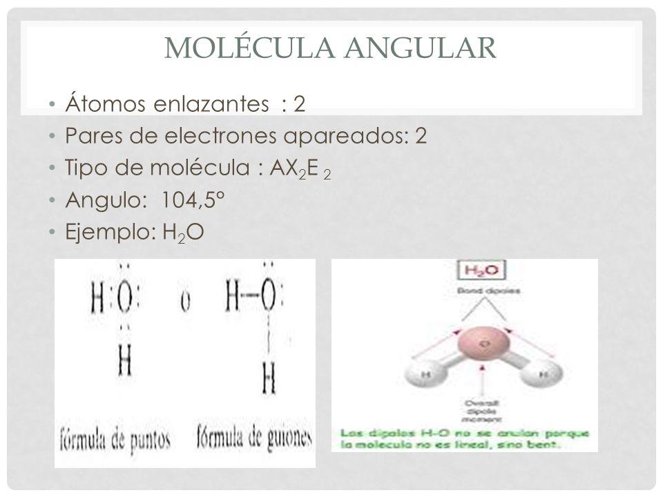 TIPOS DE GEOMETRÍA MOLECULAR Átomos enlazantes Nombre del tipo de geometría Ángulo de la molécula Geometría 2lineal180° 3Trigonal120° 4Tetraédrica109,5° 3, E = 1Piramidal107° 2, E = 2Angular104,5°