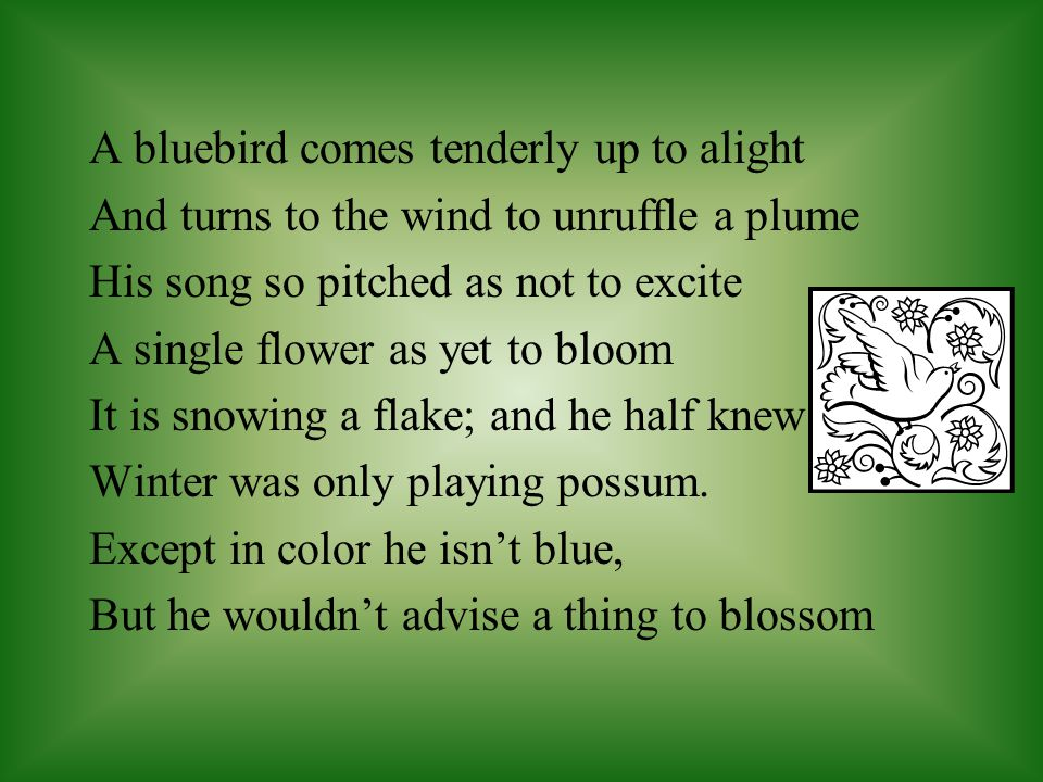 A bluebird comes tenderly up to alight And turns to the wind to unruffle a plume His song so pitched as not to excite A single flower as yet to bloom It is snowing a flake; and he half knew Winter was only playing possum.