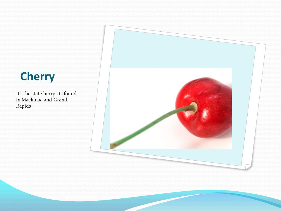 Cherry It's the state berry. Its found in Mackinac and Grand Rapids