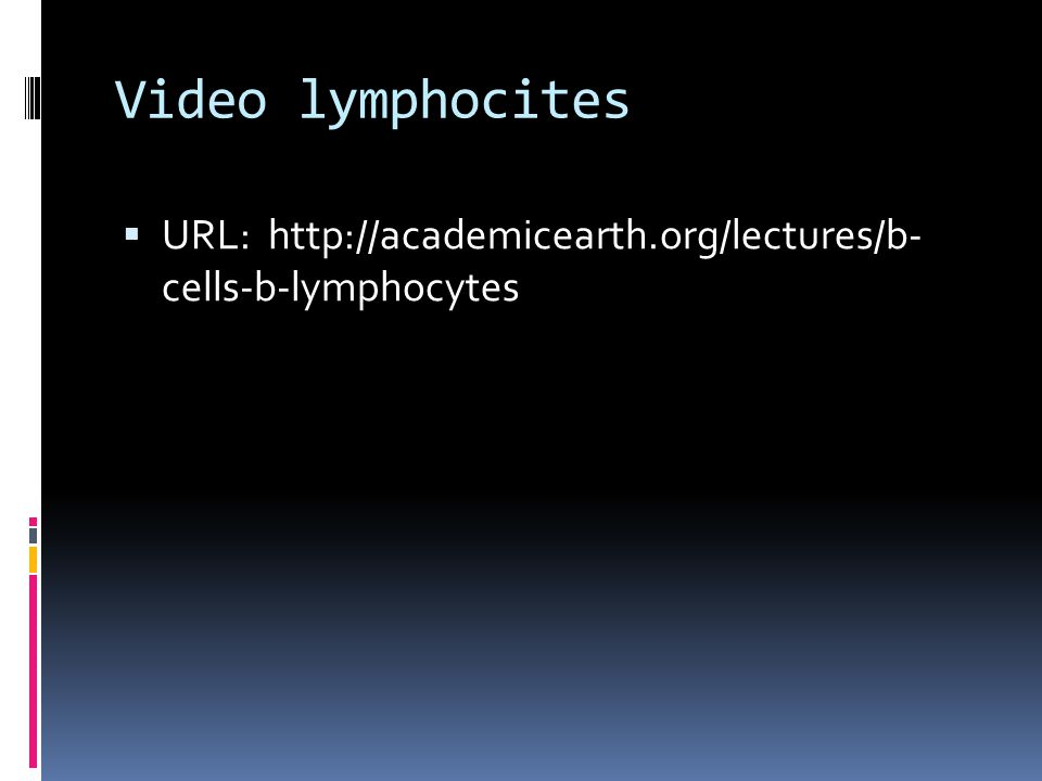 Video lymphocites  URL: http://academicearth.org/lectures/b- cells-b-lymphocytes