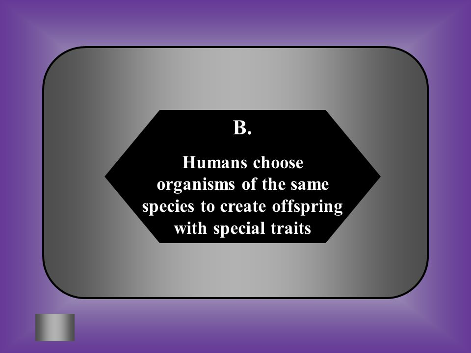 A: B: Movement of organisms from one place to another Humans choose organisms of the same species to create offspring with special traits #7 What is selective breeding.