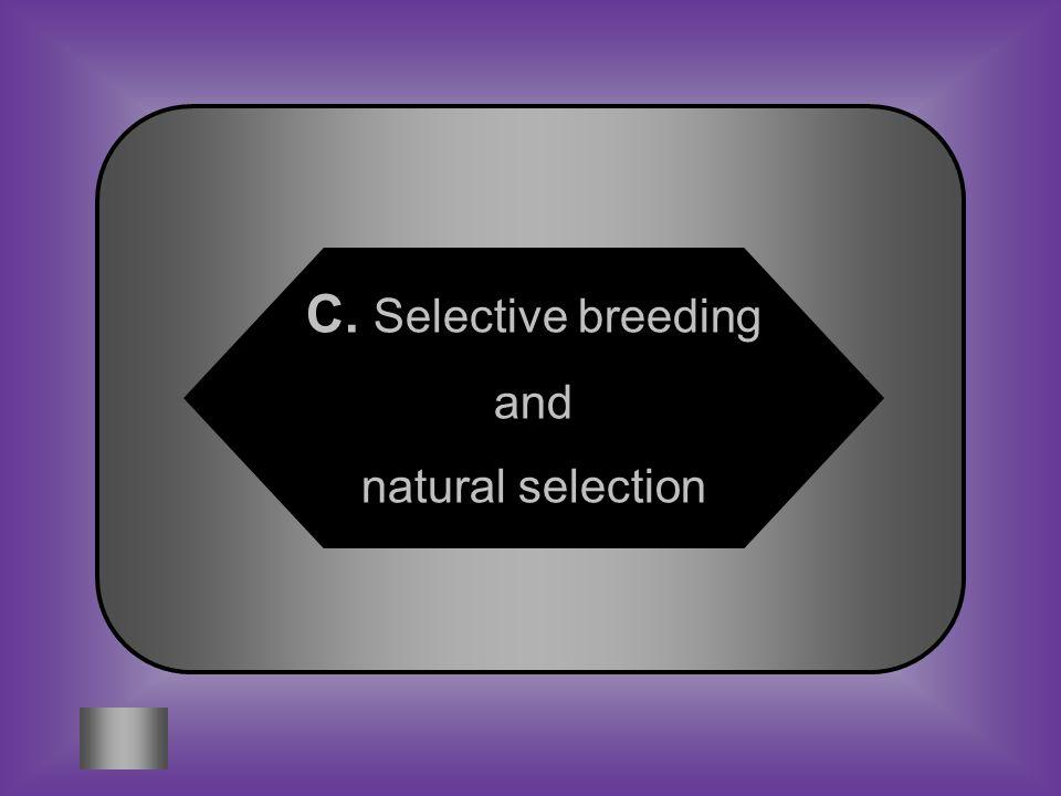 A:B: Mitosis and MeiosisExtraction and extinction #8 Two processes that affect genetic traits.