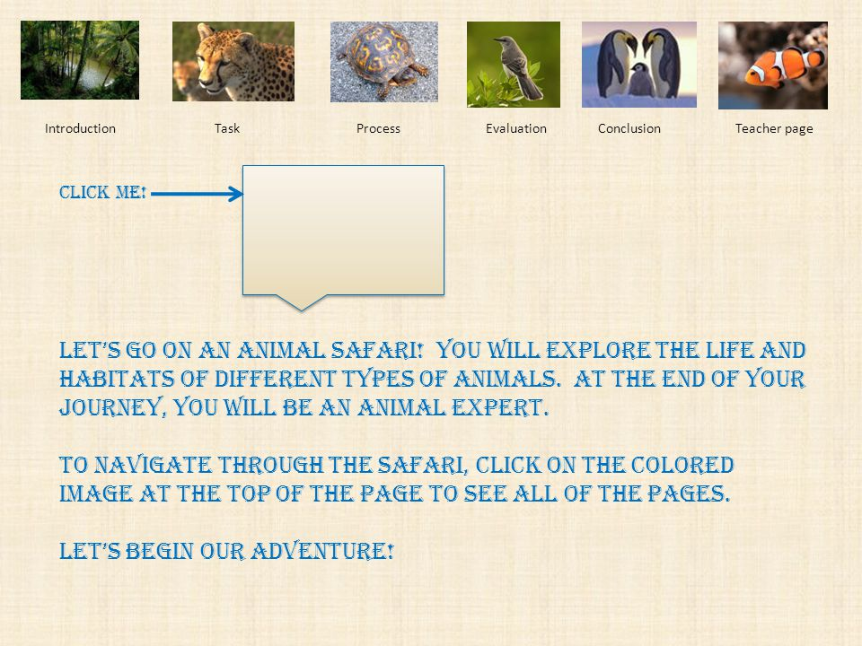 Introduction Task Process EvaluationConclusionTeacher page Animal Adventures: Learning about Different Kinds of Animals A WebQuest for Kindergarteners