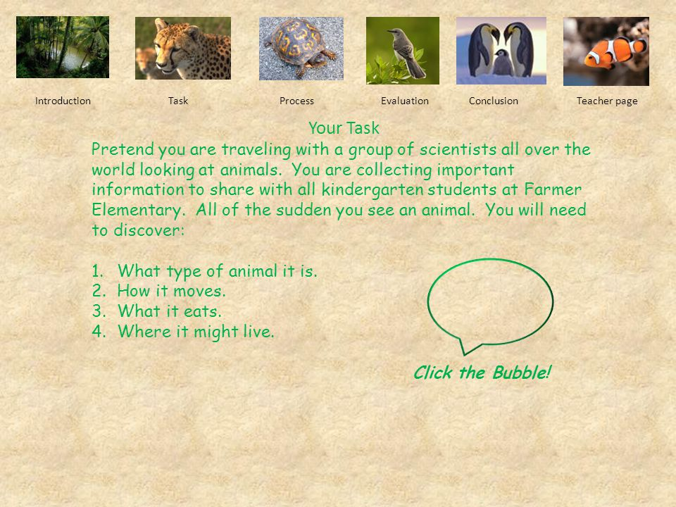 Click ME! Let's go on an animal safari! You will explore the life and habitats of different types of animals. At the end of your journey, you will be