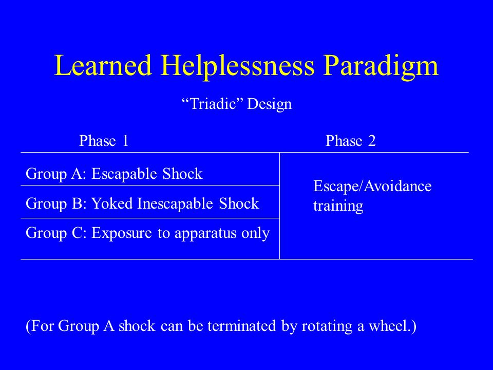 Learned Helplessness Paradigm Triadic Design Group A: Escapable Shock Group B: Yoked Inescapable Shock Group C: Exposure to apparatus only Phase 1Phase 2 Escape/Avoidance training (For Group A shock can be terminated by rotating a wheel.)