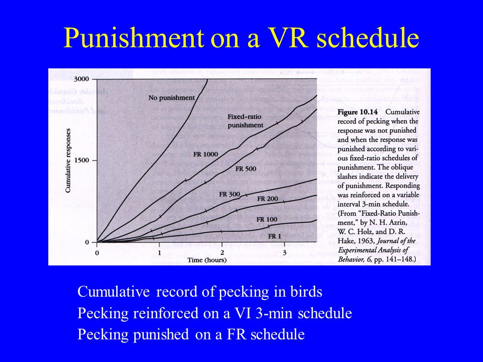 Punishment on a VR schedule Cumulative record of pecking in birds Pecking reinforced on a VI 3-min schedule Pecking punished on a FR schedule