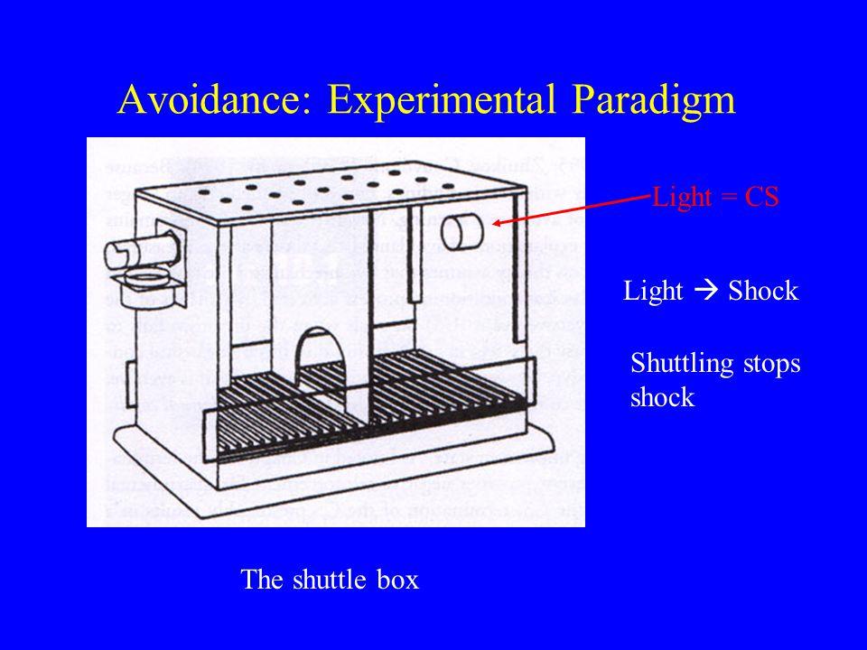 Avoidance: Experimental Paradigm The shuttle box Light = CS Light  Shock Shuttling stops shock