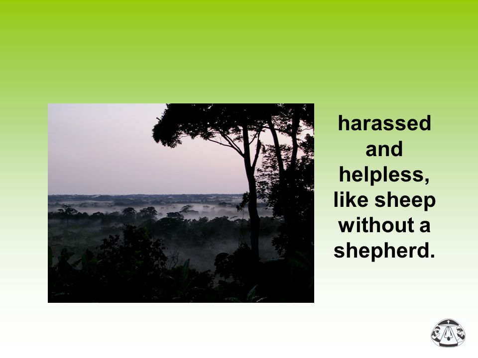 harassed and helpless, like sheep without a shepherd.
