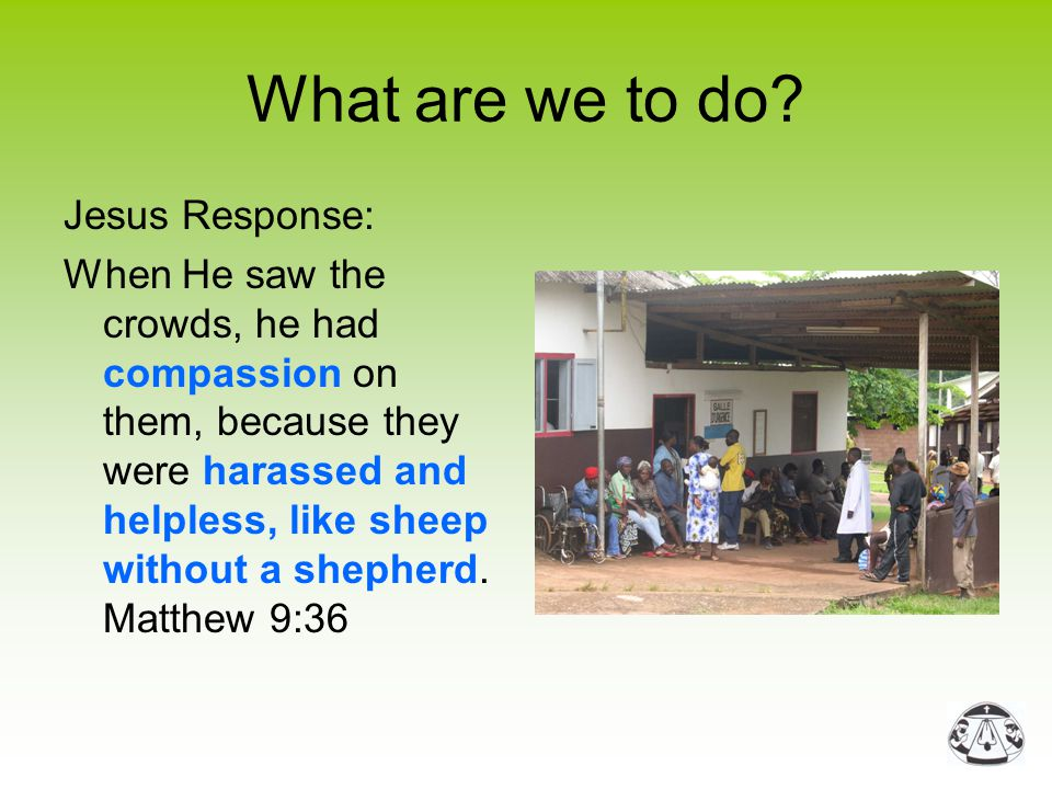 What are we to do? Jesus Response: When He saw the crowds, he had compassion on them, because they were harassed and helpless, like sheep without a sh