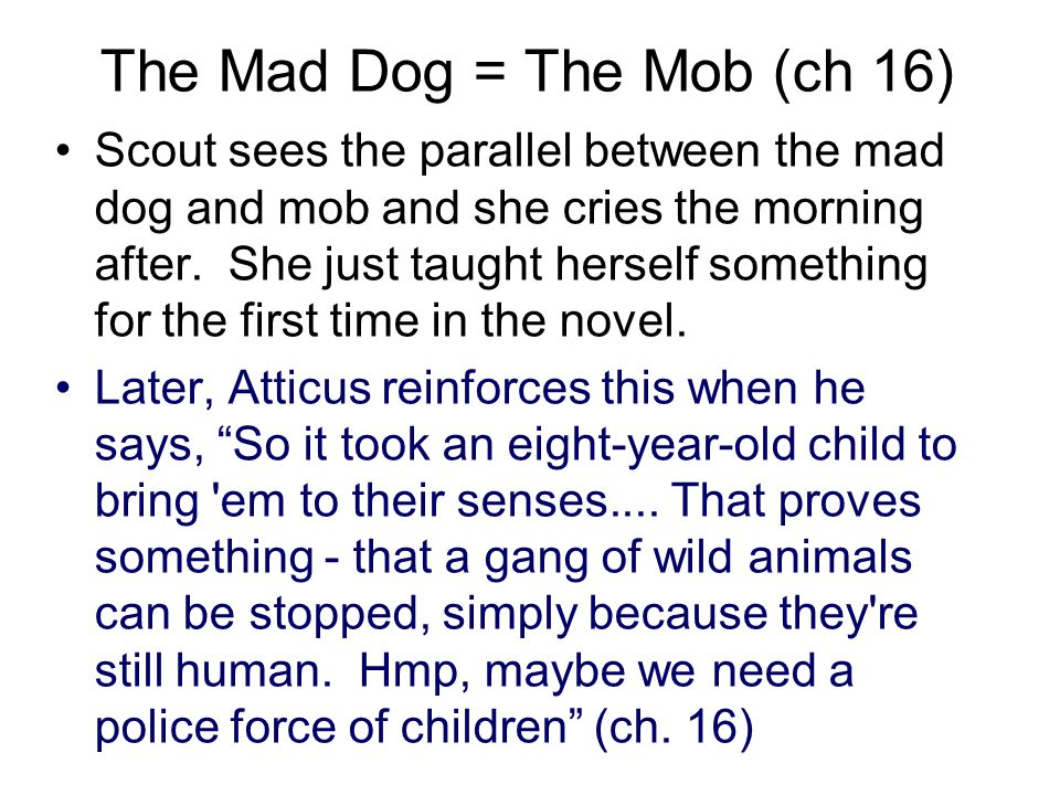 The Mad Dog = The Mob (ch 16) Scout sees the parallel between the mad dog and mob and she cries the morning after. She just taught herself something f