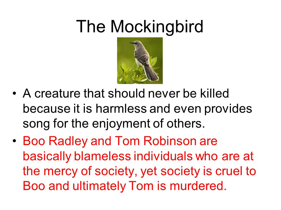 The Mockingbird A creature that should never be killed because it is harmless and even provides song for the enjoyment of others. Boo Radley and Tom R