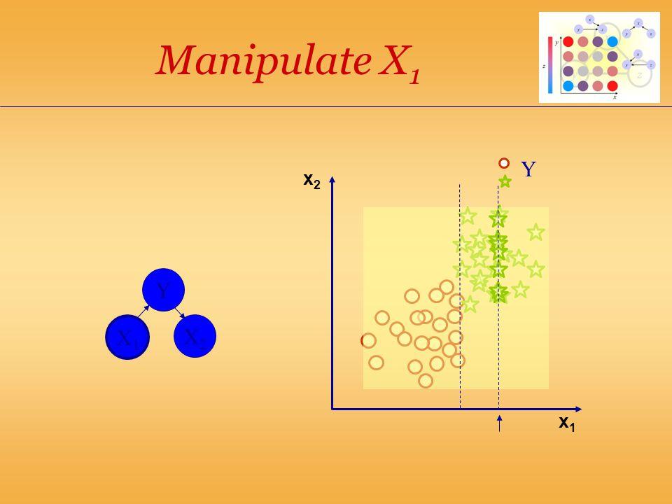 x1x1 Manipulate X 1 Y X1X1 X2X2 Y x2x2
