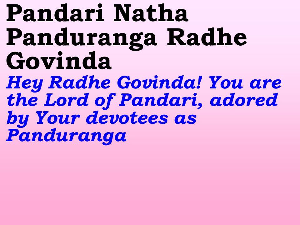 Pandari Natha Panduranga Radhe Govinda Hey Radhe Govinda.