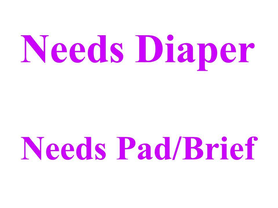 Needs Diaper Needs Pad/Brief