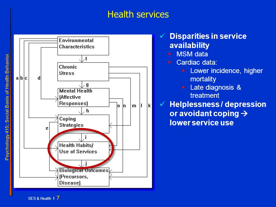 Psychology 415; Social Basis of Health Behavior SES & Health 1 7 Health services Disparities in service availability  MSM data  Cardiac data:  Lower incidence, higher mortality  Late diagnosis & treatment Helplessness / depression or avoidant coping  lower service use