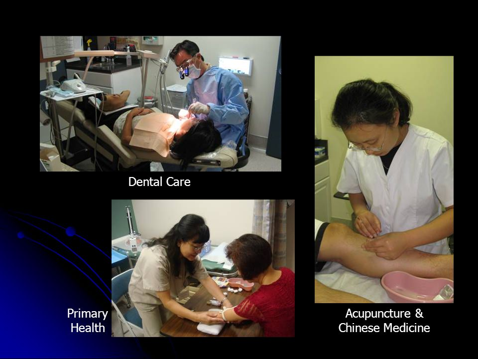 Acupuncture & Chinese Medicine Primary Health Dental Care