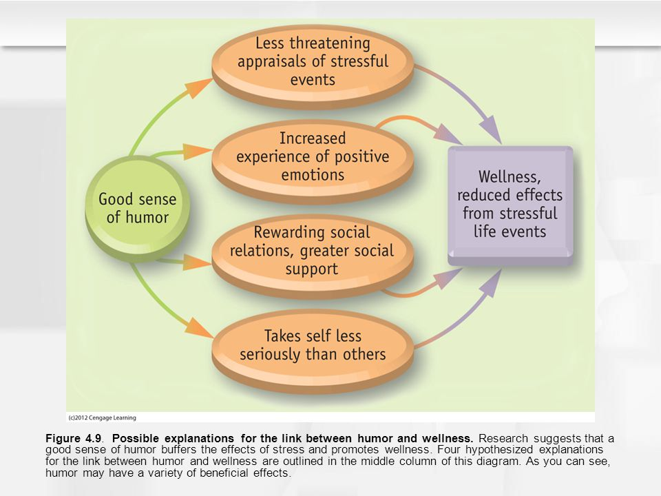 Figure 4.9. Possible explanations for the link between humor and wellness. Research suggests that a good sense of humor buffers the effects of stress