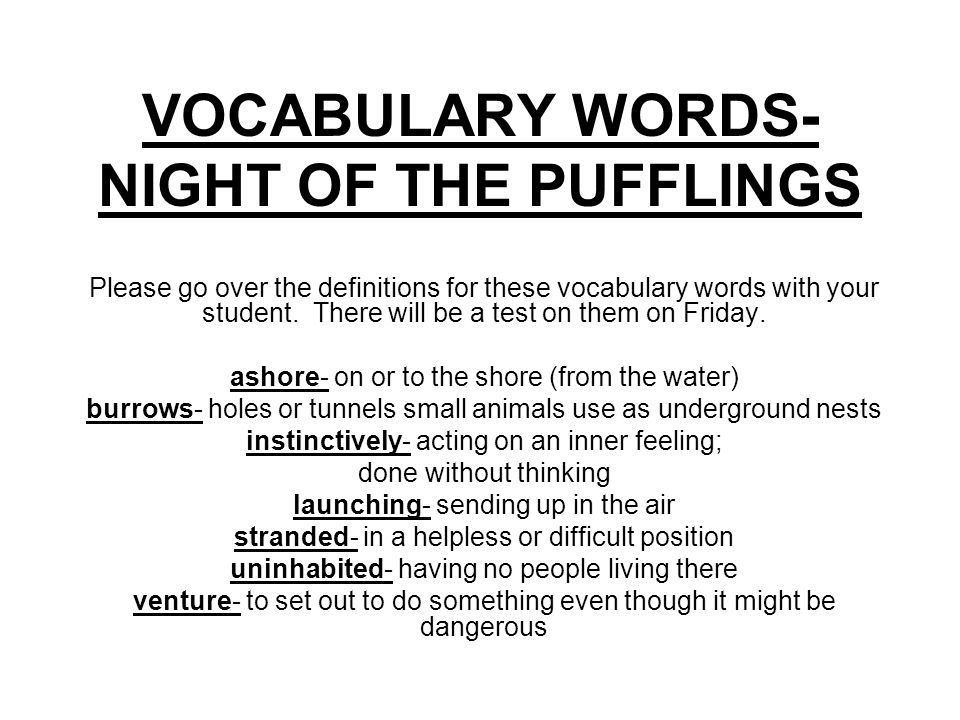 VOCABULARY WORDS- NIGHT OF THE PUFFLINGS Please go over the definitions for these vocabulary words with your student. There will be a test on them on