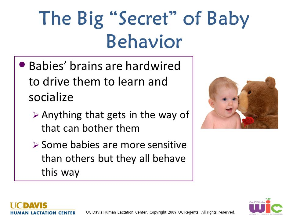 """UC Davis Human Lactation Center. Copyright 2009 UC Regents. All rights reserved. The Big """"Secret"""" of Baby Behavior Babies' brains are hardwired to dri"""